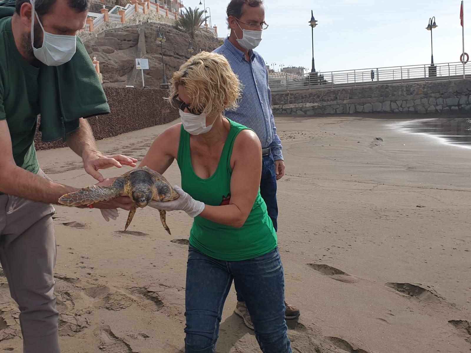 Suelta de tortuga en la Playa de Melenara en Telde