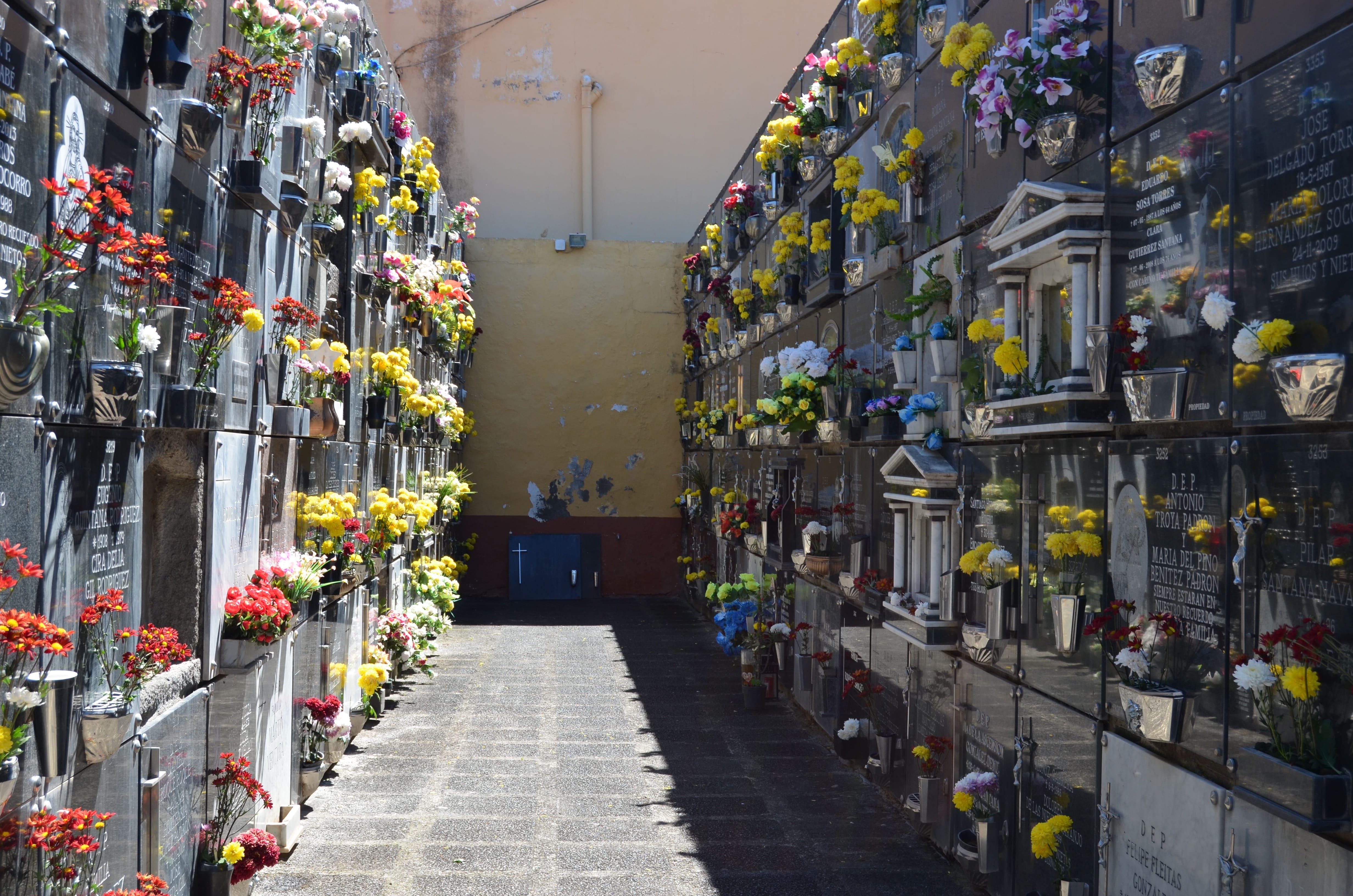 Cementerio de Santa Brígida