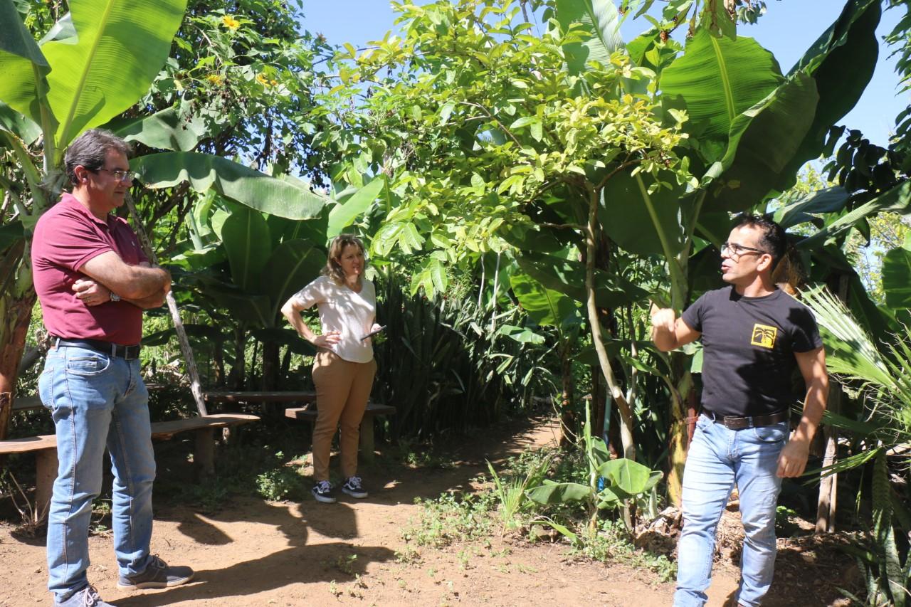 El Cabildo y el Gobierno de Canarias apuesta por impulsar la agricultura ecológica en La Palma