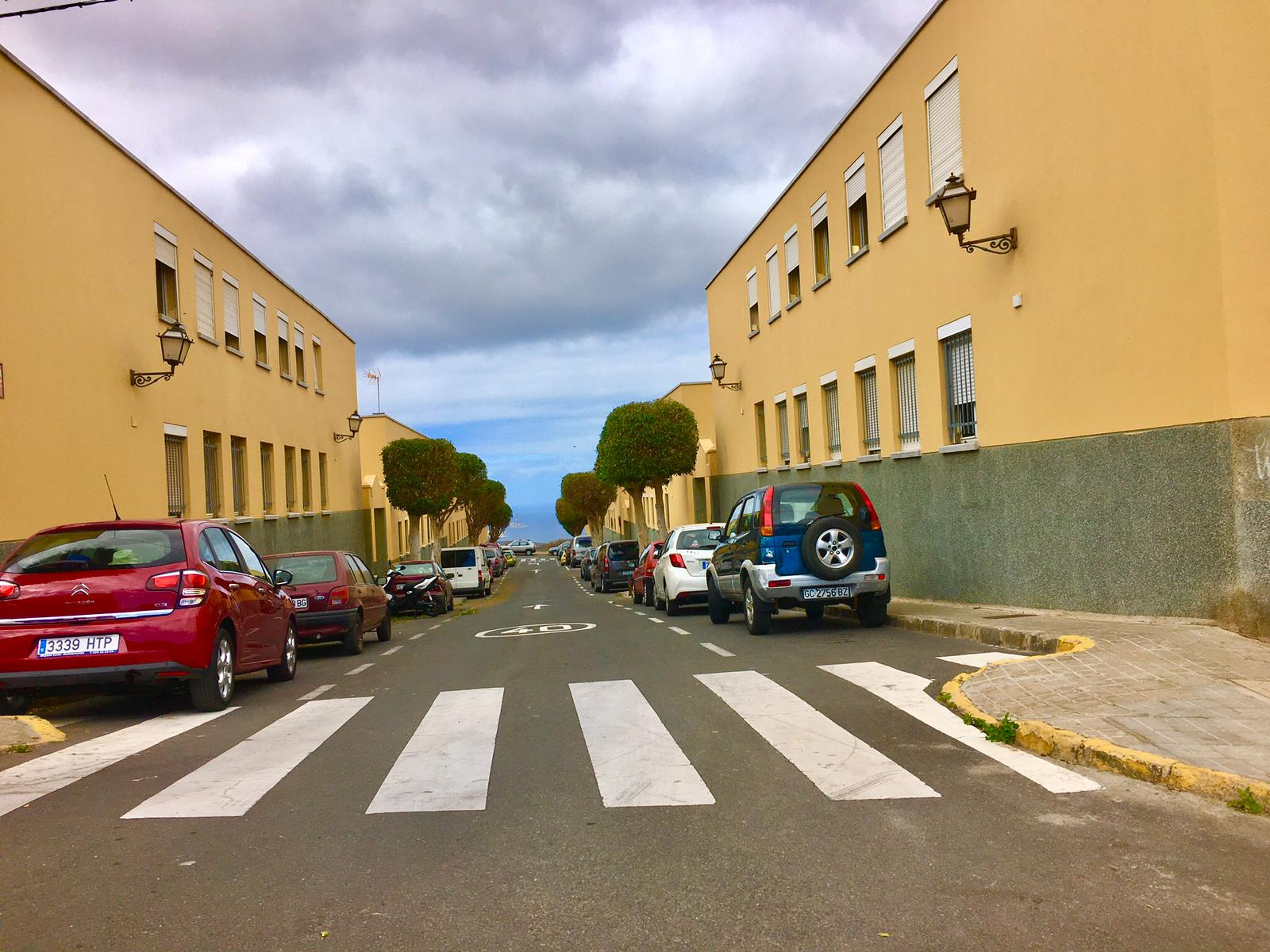 Poda en la costa de Melenara, Telde. Gran Canaria