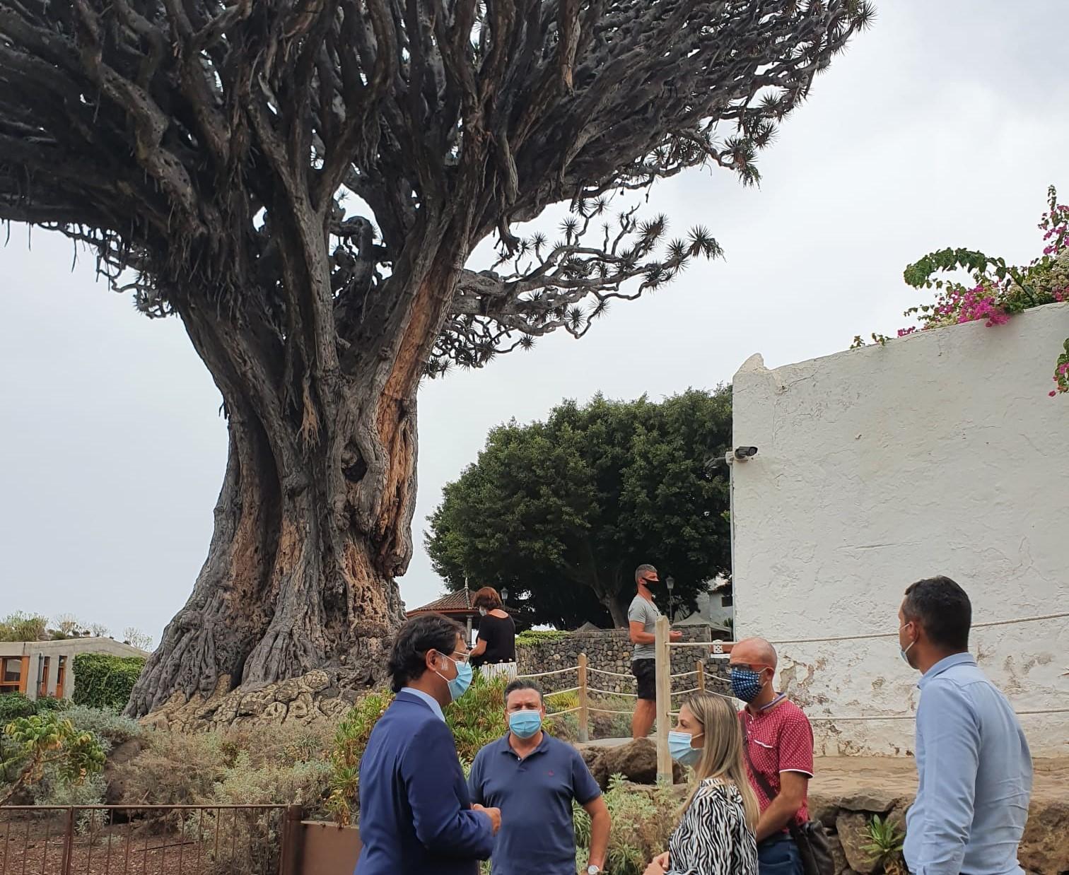 Teresa Berástegui visita Icod de los Vinos. Tenerife