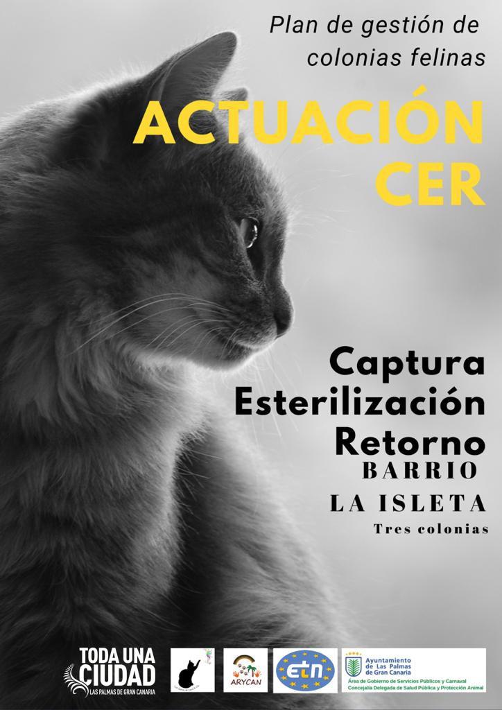 Control y mantenimiento de las colonias felinas en La Isleta. Las Palmas