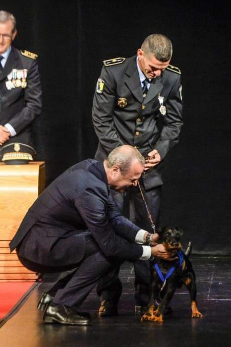 Nublo, agente canino de la Policía Local de Las Palmas de Gran Canaria/ canariasnoticias.es