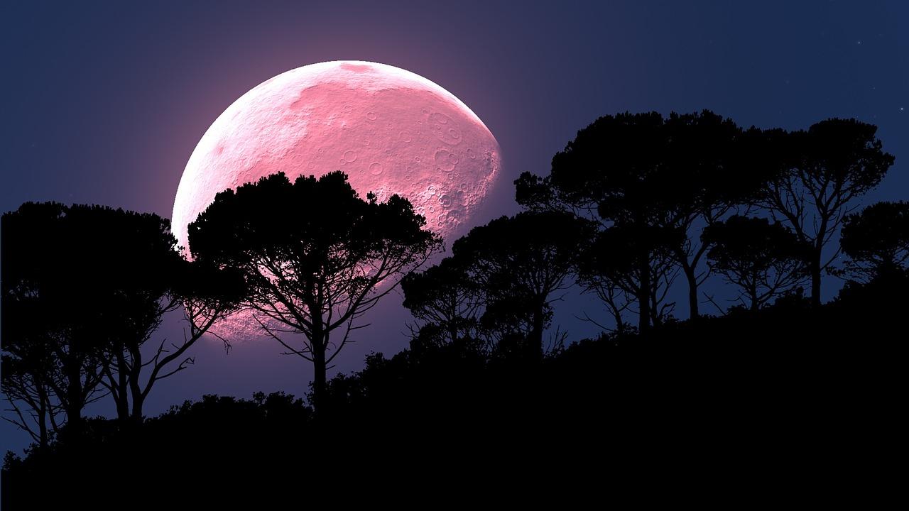 Superluna rosa