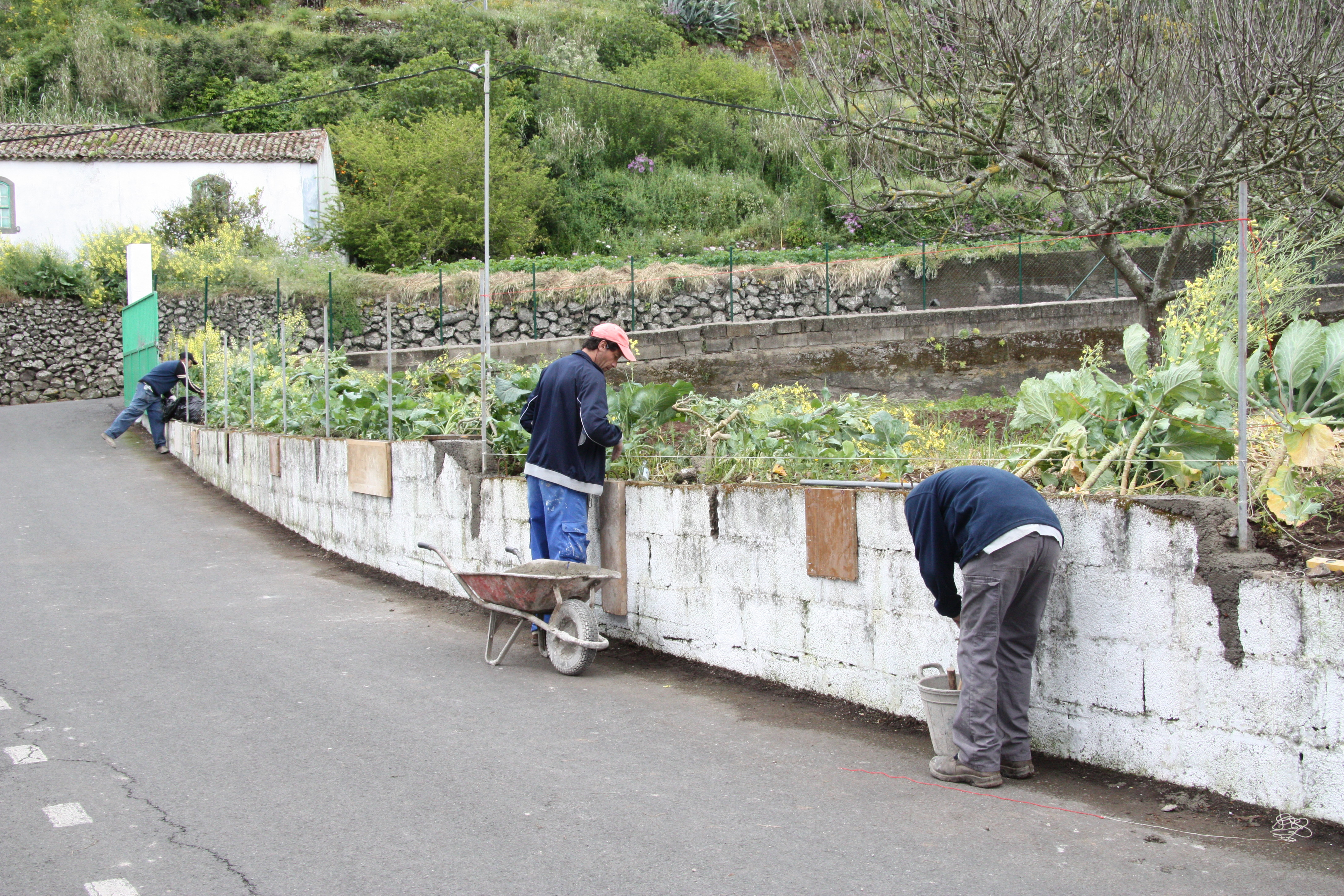 Trabajadores del Programa Extraordinario de Empleo Social de Valleseco (Gran Canaria) / CanariasNoticias.es