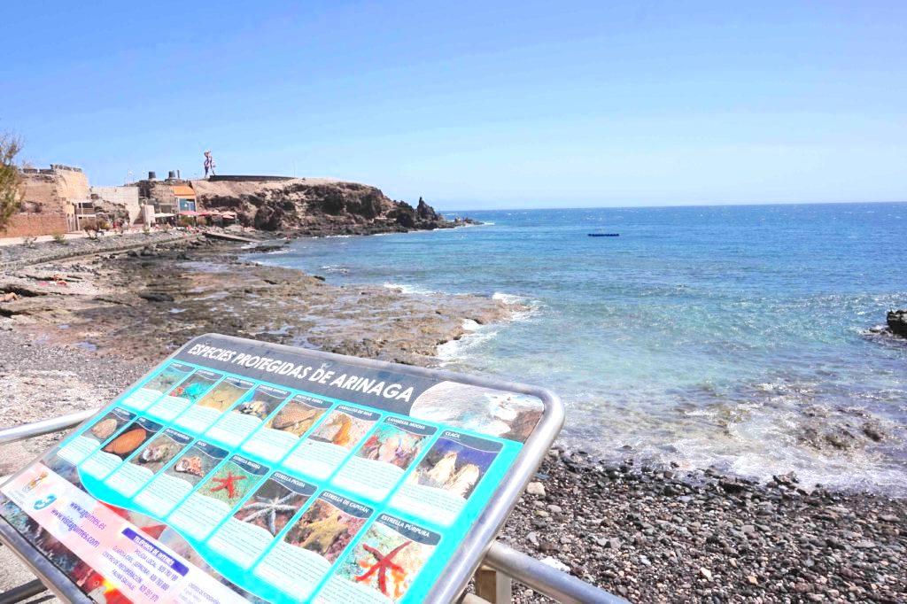 Playa de Arinaga en Agüimes (Gran Canaria) / CanariasNoticias.es