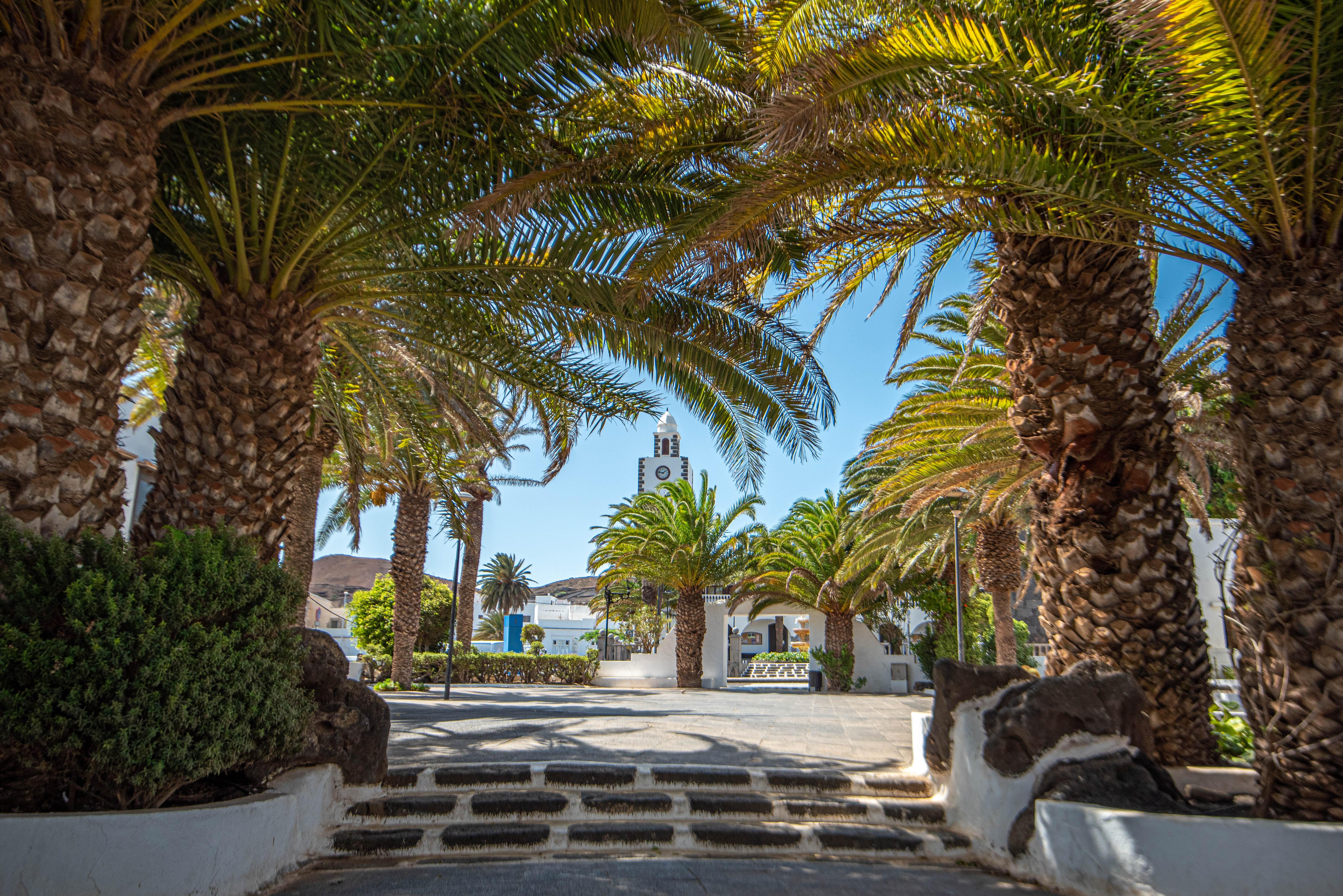 San Bartolomé (Lanzarote) / CanariasNoticias.es
