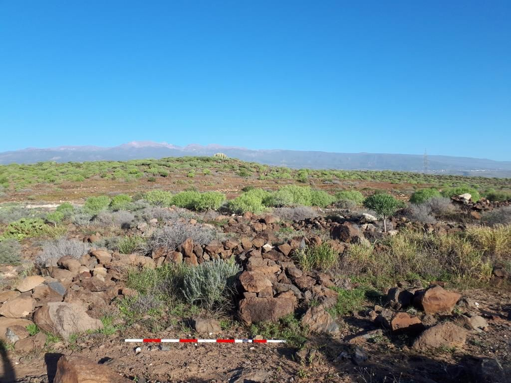 Llanos de Ifara en Granadilla de Abona (Tenerife) / CanariasNoticias.es