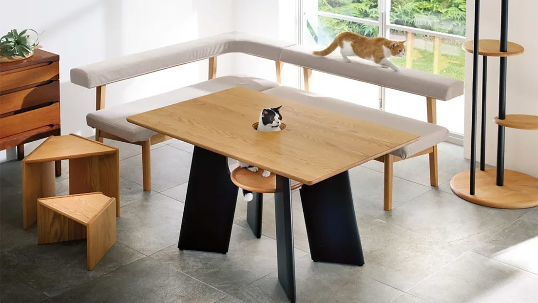 Mesa de comedor para gatos