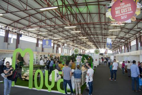 Stand de Moya en la Feria Gran Canaria me Gusta