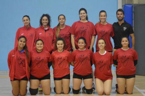 Jugadoras de voleibol