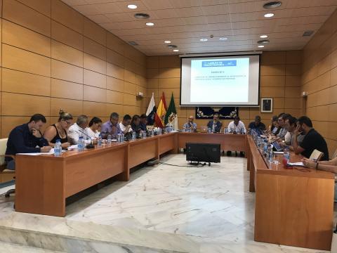 Pleno del Cabildo de Fuerteventura