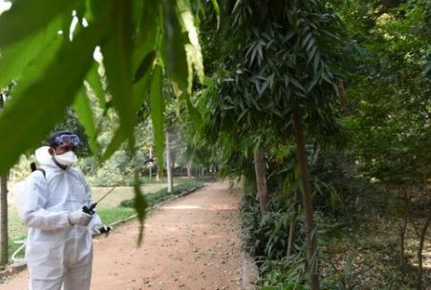 Un hombre fumigando en un parque