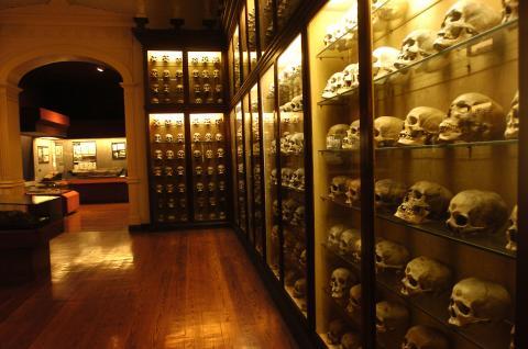Sala del Museo Canario