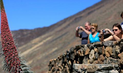 turistas haciendo fotos