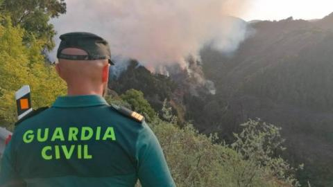 Guardia Civil en el Incendio forestal de Gran Canaria