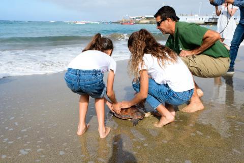 Suelta de tortugas en la Playa de Las Canteras