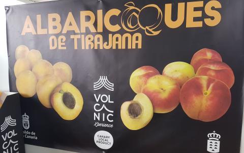 Albaricoques de San Bartolomé de Tirajana