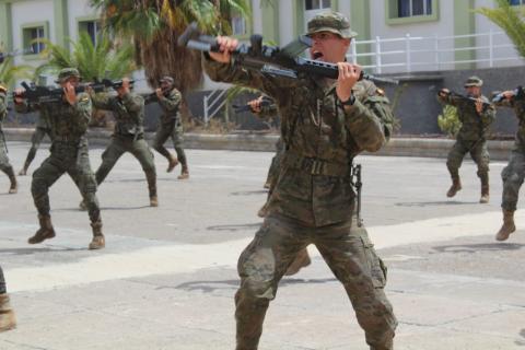 """Brigada """"Canarias"""" XVI (FIBCAN)"""