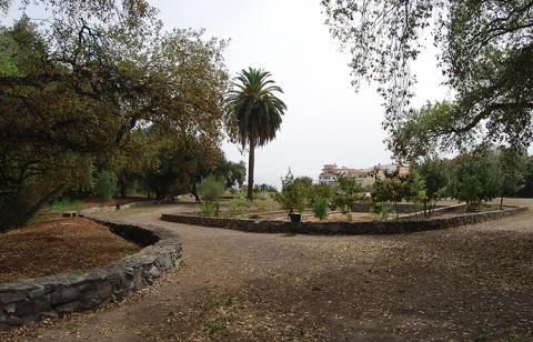 Parque José Hernández de Teror. Gran Canaria