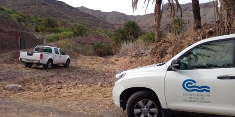retirada de cañaverales para la prevención de incendios forestales. Gran Canaria