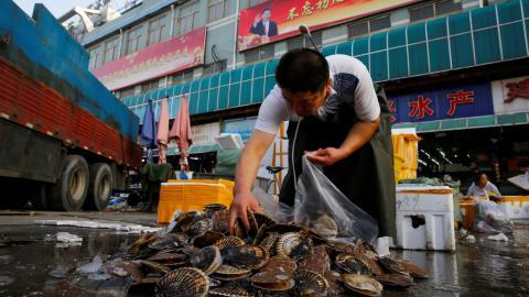 Mercado de pescado. China