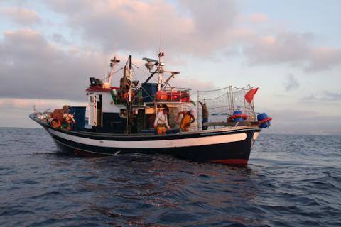 Pesca, Canarias
