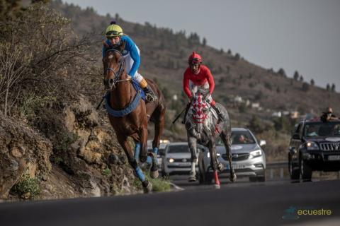 Carrera Ecuestre La Palma