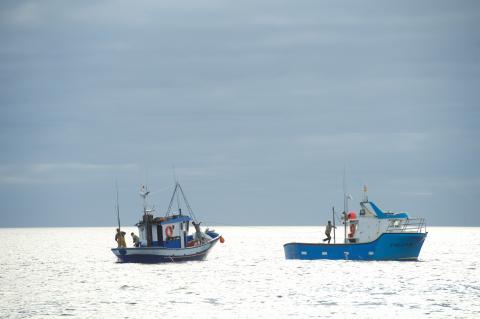 Pesqueros canarios
