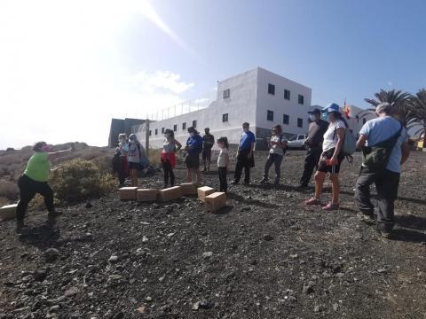 La Candelaria. Pardela Cenicienta. Tenerife/ CanariasNoticias.es