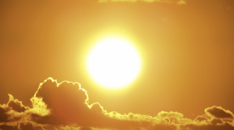 Calor en Canarias. CanariasNoticias.es