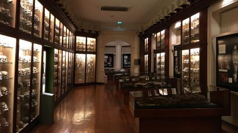 El Museo Canario. Las Palmas de Gran Canaria