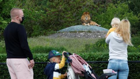 familia visita un zoo