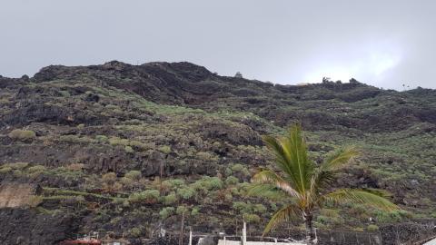 Ladera El Time. La Palma/ canariasnoticias.es
