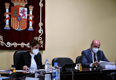 Onalia Bueno. Mogán/ canariasnoticias.es
