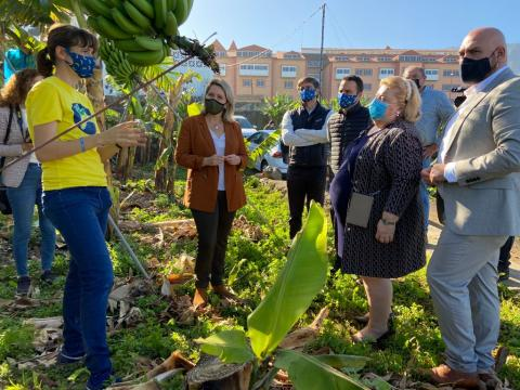 Visita a una finca de Plátano de Canarias en Puerto de la Cruz / CanariasNoticias.es