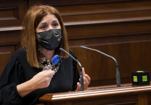 Carmen Hernández, portavoz parlamentaria de Nueva Canarias (NC) en materia social / CanariasNoticias.es