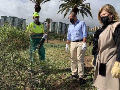 Augusto Hidalgo e Inmaculada Medina visitan la plantación de Jinámar / CanariasNoticias.es