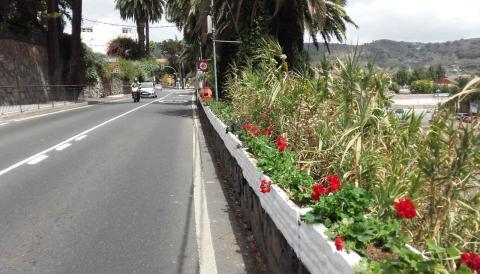 Parques y Jardines de Santa Brígida / CanariasNoticias.es
