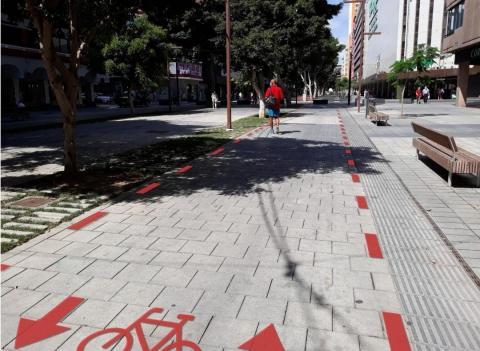 Carril bici de la Avenida de Mesa y López en Las Palmas de Gran Canaria / CanariasNoticias.es