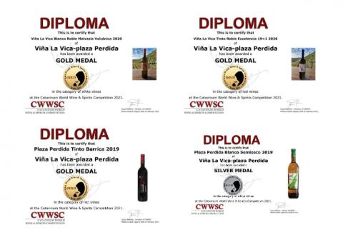 Diplomas de Viña La Vica - Plaza Perdida / CanariasNoticias.es