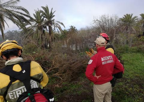 Trabajadores de Medio Ambiente / CanariasNoticias.es