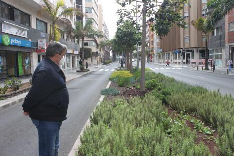 Javier Doreste, concejal de Urbanismo del Ayuntamiento de Las Palmas de Gran Canaria / CanariasNoticias.es