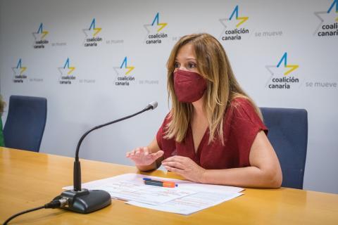Rosa Dávila, diputada de Coalición Canaria de Tenerife / CanariasNoticias.es