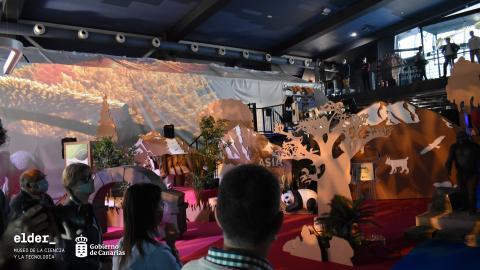 Exposición 'Tiempo para el Cambio. Una experiencia Con_ciencia' en el Museo Elder / CanariasNoticias.es