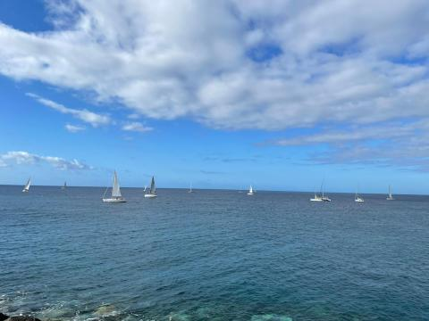 El Puerto de Vueltas recibe la V Regata Puertos Canarios / CanariasNoticias.es