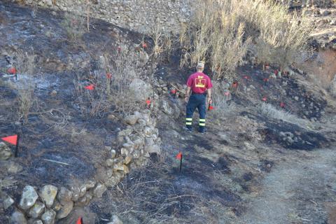 Incendio de Arico/ canariasnoticias