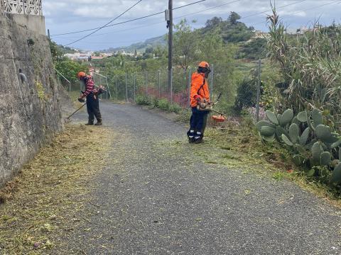 Limpieza de los márgenes de las vías públicas de Valleseco (Gran Canaria) / CanariasNoticias.es