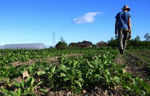Ayudas para jóvenes agricultores de Canarias / CanariasNoticias.es