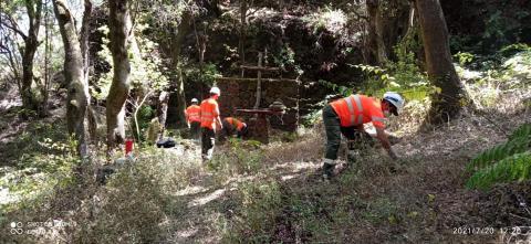 Mantenimiento y mejora de senderos en El Hierro / CanariasNoticias.es